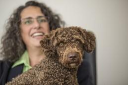 Ella Waterdog, Buerohund der Ferber Personalberatung, Bürohund hat klare Vorteile