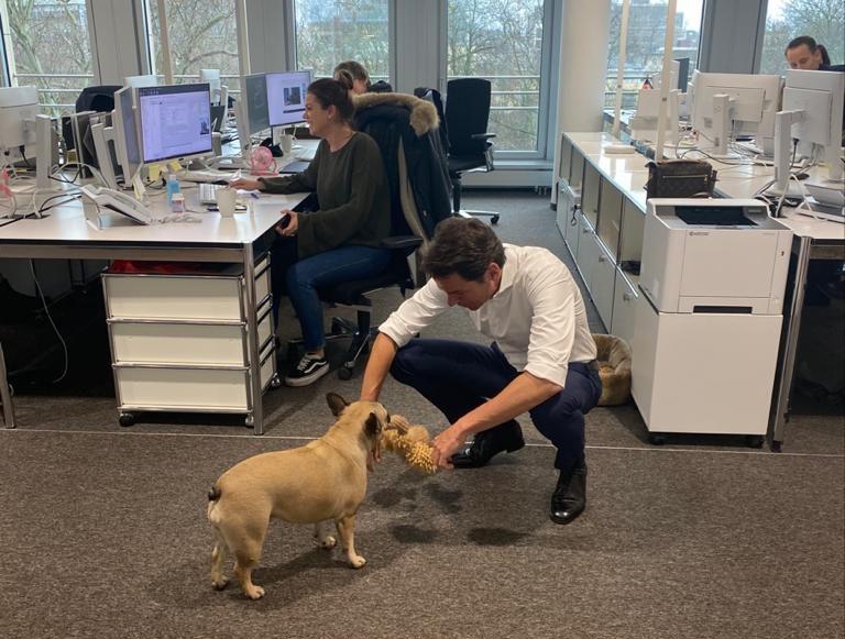 Geschäftsführer tobt mit Bürohund Myu blackolive advisors GmbH